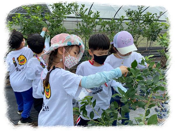 농업·농촌체험-농작물 수확하기