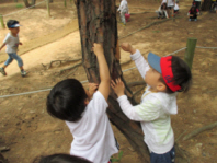 자연을<br> 사랑하는 아이들